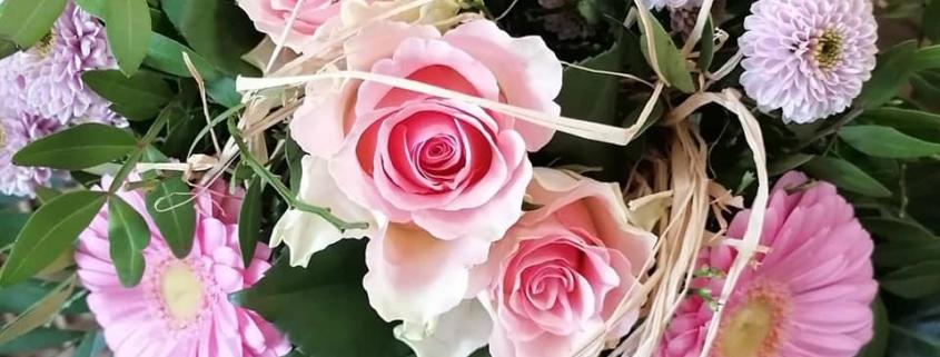 Rosa, die Herzensfarbe